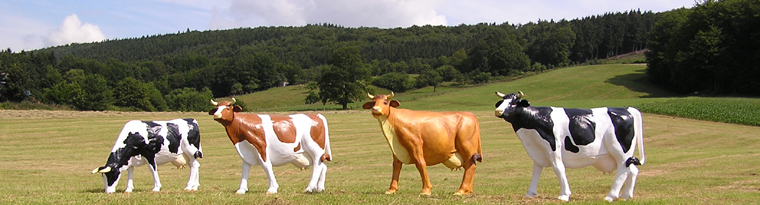 Figurenhalle Kuhe Als Dekofiguren In Lebensgosse